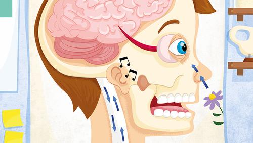 ed-myer-medical-illustrations-for-iseek