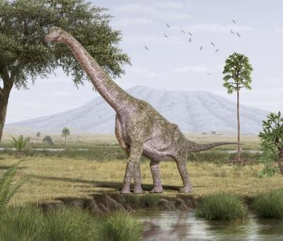 val-dinosaur-brachiosaurus
