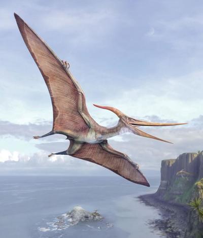 val-dinosaur-pteranodon