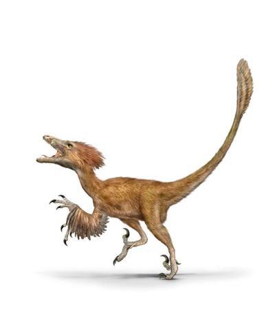 val-dinosaur-deinonychus