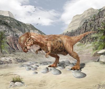 val-dinosaur-pachycephalosaurus