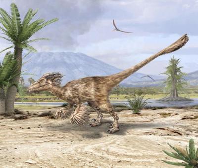 val-dinosaur-utahraptor