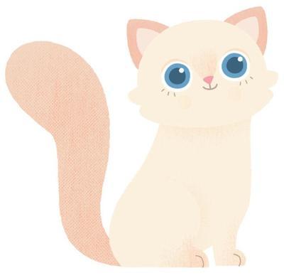 kitten-jpg