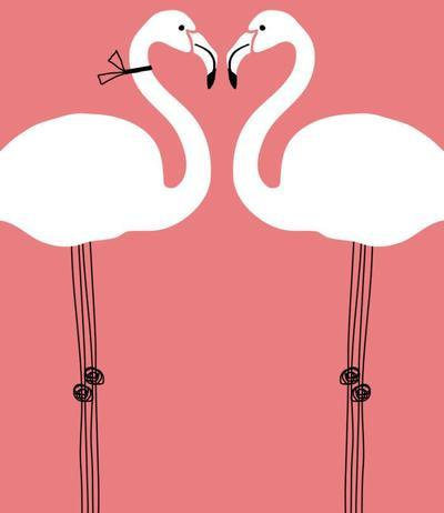 flamingo-crop-jpg