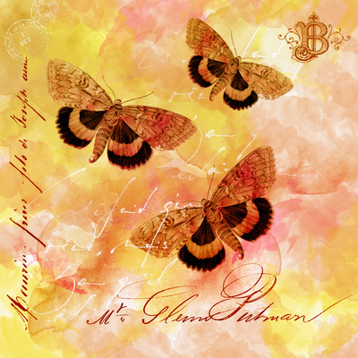 vintage-butterfly-34-jpg