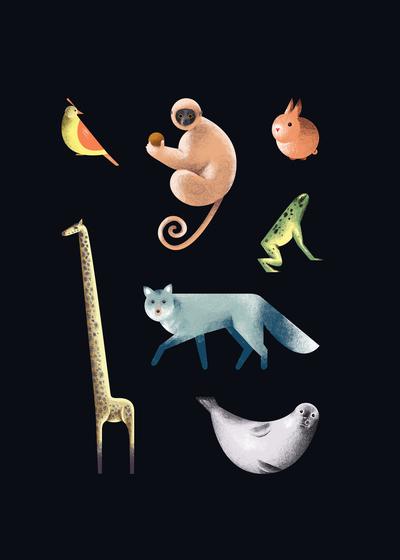 animals-jpg-15