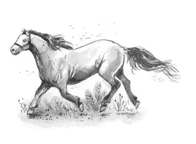 horse-jpg